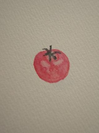 トマト②17.4.13.jpg