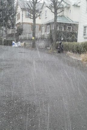 雪17.2.10.jpg